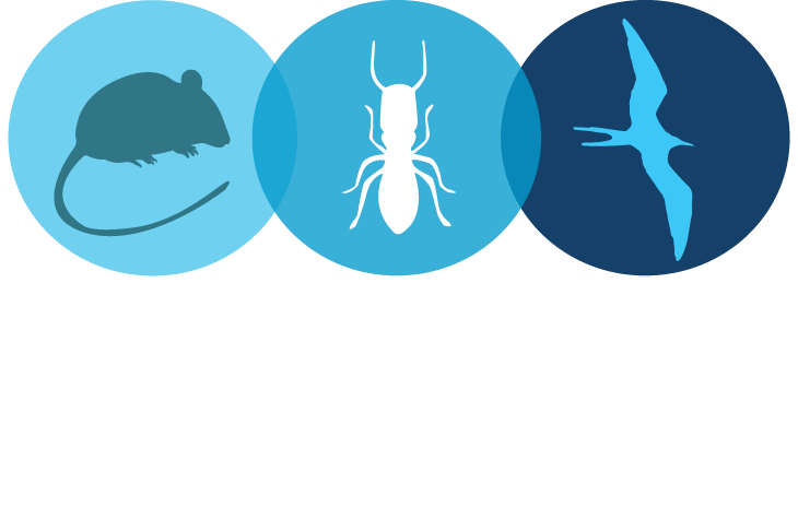 Diamond Valley Termite and Pest Control